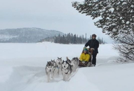 Rollstuhl-Urlaub: Meet the lovely Siberian Huskies and let them take you across the frozen lake. 2 types of sled to suit all abilities. - The Friendly Moose Lapland