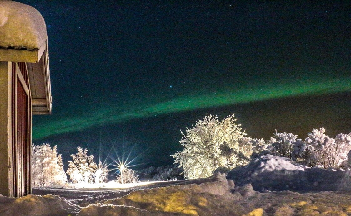 Rollstuhl-Urlaub: The Northern lights can be seen on a regular basis when skies are clear and mother nature is kind. They are very special. - The Friendly Moose Lapland