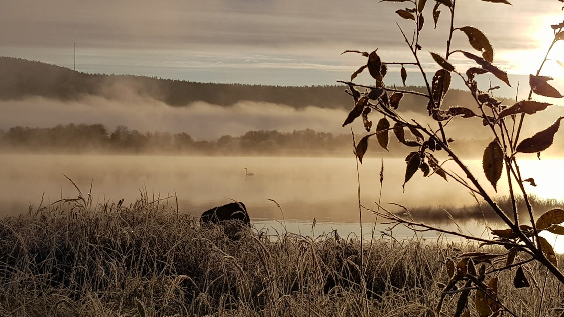 Rollstuhl-Urlaub: The first mists and frosts of Autumn on the river Torne. The hill in the background is Finland. We are right on the border between Sweden and Finland so both countries can be explored.  - The Friendly Moose Lapland